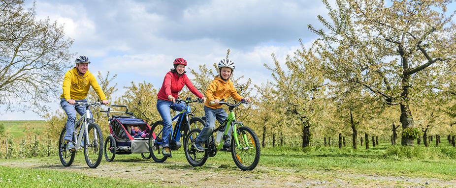 Nicht Jedes Fahrrad Ist Für Radanhänger Geeignet Adac