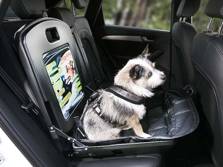 Hund Transport Sicherheit Auto Doggysafe Sitz